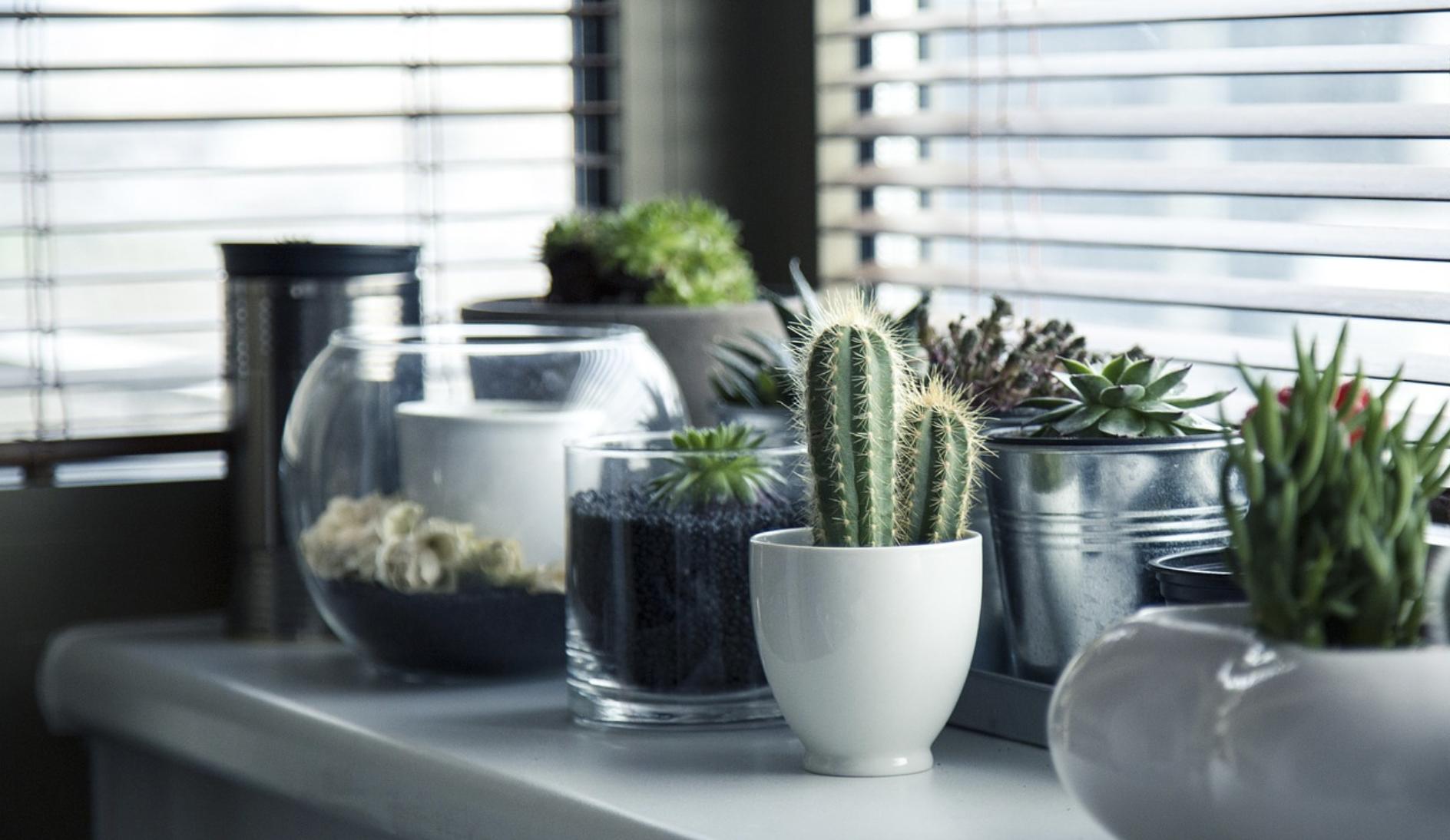 Home interiors PR agency